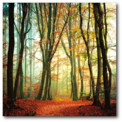 Autumn Light Canvas Wall Art