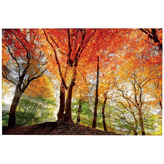 Splendor Of Autumn Canvas Wall Art