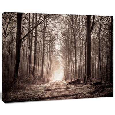 Designart Forest Trail In Sepia Landscape Photography Canvas Art Print
