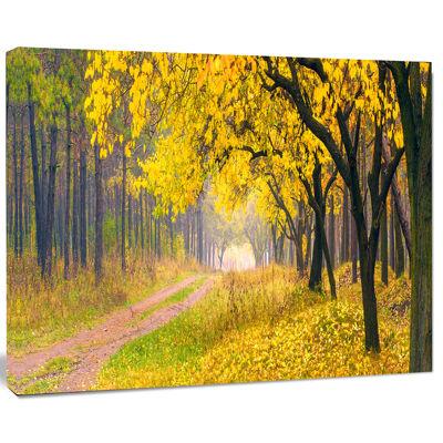 Designart Bright Yellow Autumn Forest Landscape Photo Canvas Art Print