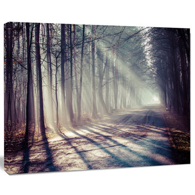 Designart Morning Sunbeams To Forest Road Landscape Photography Canvas Print