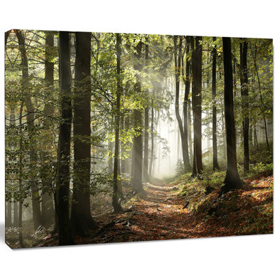 Designart Green Fall Forest With Sun Rays Landscape Photography Canvas Print