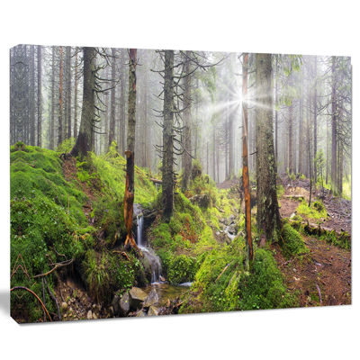 Designart Bright Green Carpathian Forest LandscapePhotography Canvas Print