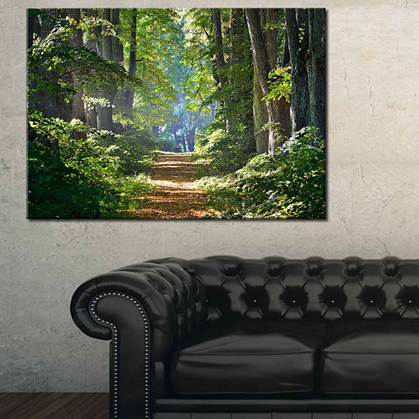Designart Bright Green Forest In Morning LandscapePhotography Canvas Print