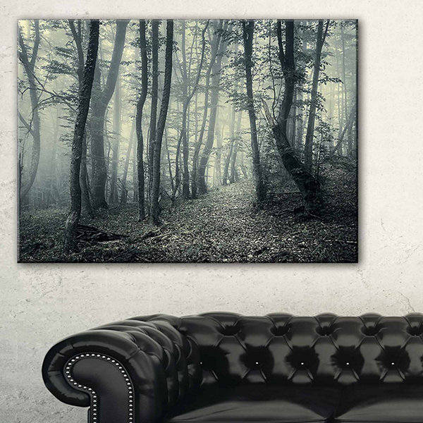 Designart Dark Gray Fall Forest Trees Landscape Photo Canvas Art Print