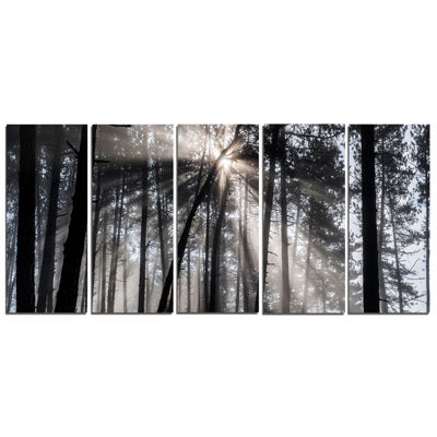 Designart Sunbeams Through Black White Forest Canvas Wall Art Print - 5 Panels