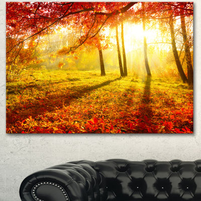 Designart Yellow Red Fall Trees And Leaves Landscape Canvas Art Print