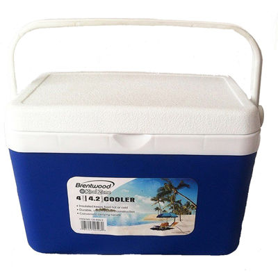 Brentwood 4 Liter (4.2Qt) Cooler Box / Ice Chest