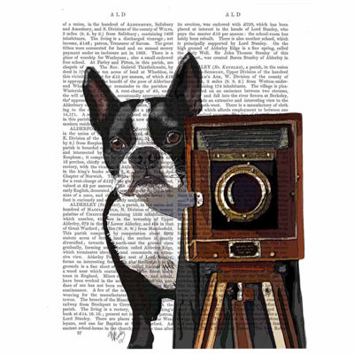 Boston Terrier Photographer Canvas Wall Art