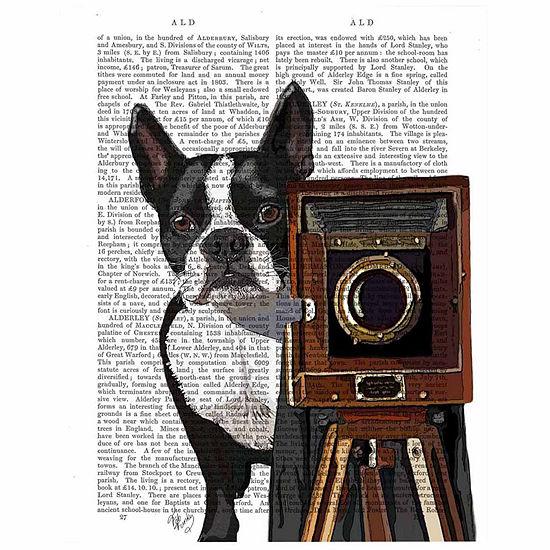 Boston Terrier Photographer Canvas Wall Art