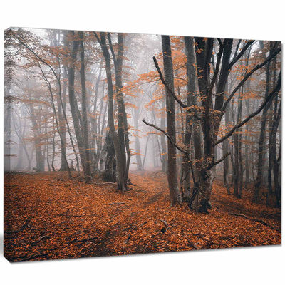 Designart Fall Trees With Fallen Leaves LandscapePhotography Canvas Print