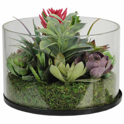 "8"" Artificial Mixed Succulent Arrangement in Round Glass Jar"""