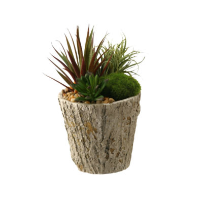 Easter Grass and Succulents in Cement Planter