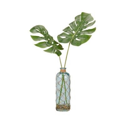 Split Leaf Philo in Glass Bottle Vase
