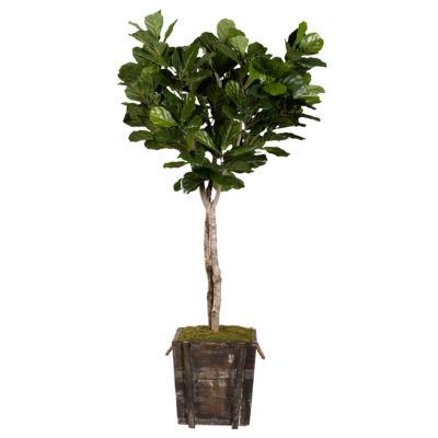 Fiddle Leaf Fig Tree in Wooden Planter