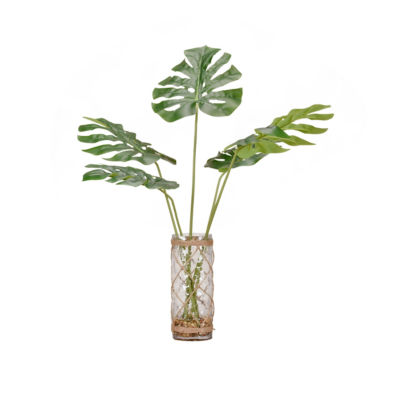 Split Leaf Philo in Glass Vase