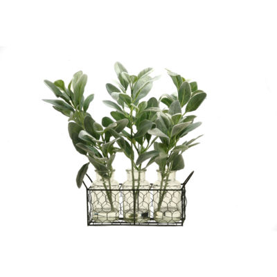 Green Lamb's Ear Branches Set in 3 Glass Jars in Metal Holder