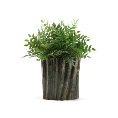 Green Locust Spray in Tall Ceramic Planter