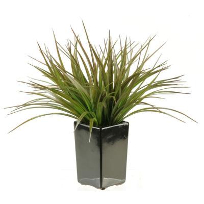 Green Brown Grass in Ceramic Planter