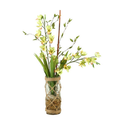 Green Yellow Cymbidium Orchids in Glass Cylinder