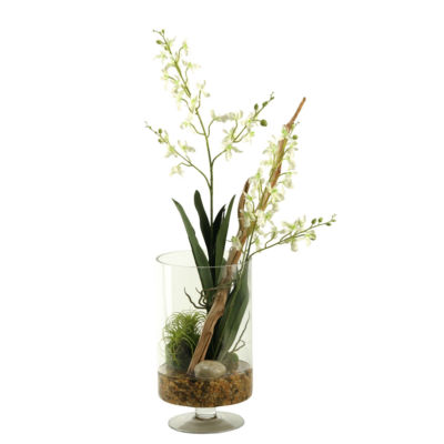 White Baby Dendrobium Orchids in Glass Pedestal Cylinder