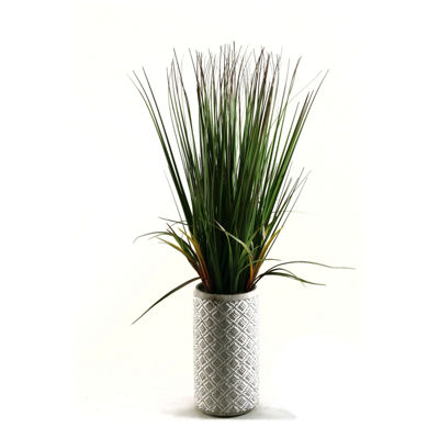 Onion Grass in Ceramic Planter