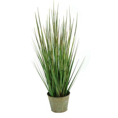 Onion Grass in Metal Planter