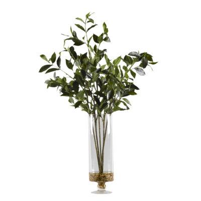 Bayleaf Branches in Glass Pedestal Vase