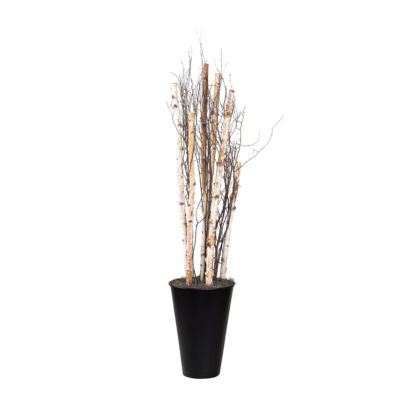 Birch Poles and Birch Tree Tops in Tall Metal Planter