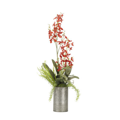 Red Baby Delphinium Orchids in Tall Metal Vase