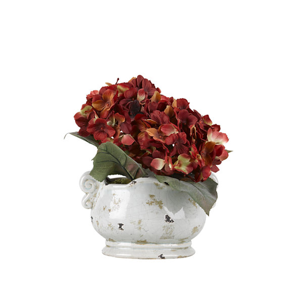 Red Hydrangeas in Ceramic Planter