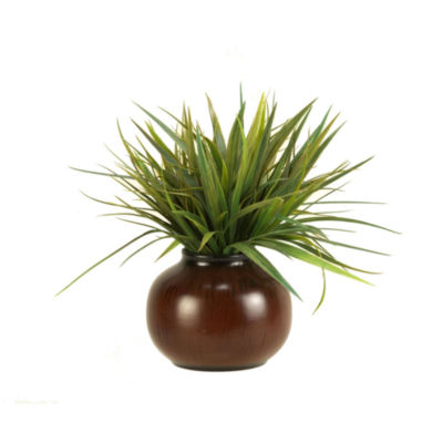 Wild Grass in Ceramic Planter