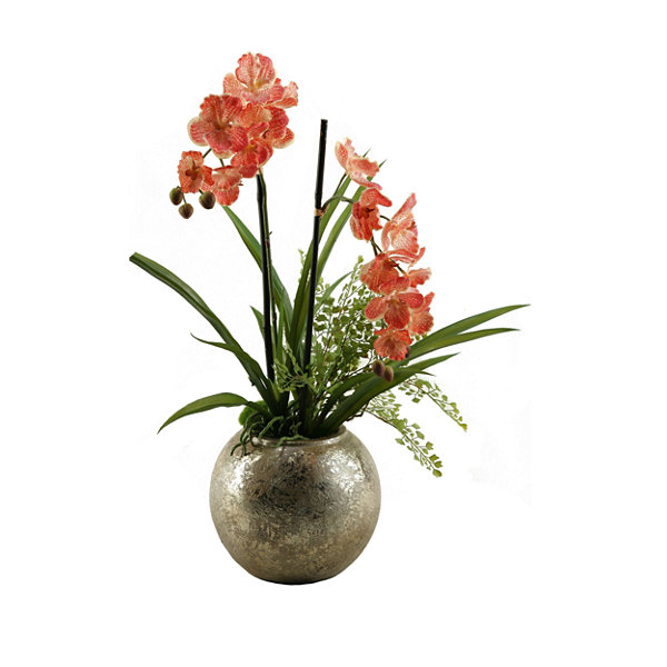 Red Vanda Orchid in Ball Planter
