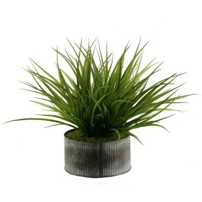 Wild Grass in Tin Planter