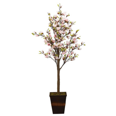 Pink Magnolia Tree in Wooden Planter