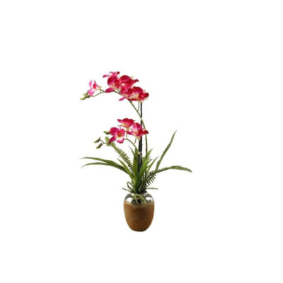 Pink White Orchids in Ceramic Planter