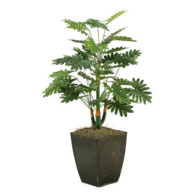 Selloum Philo Plant in Metal Planter
