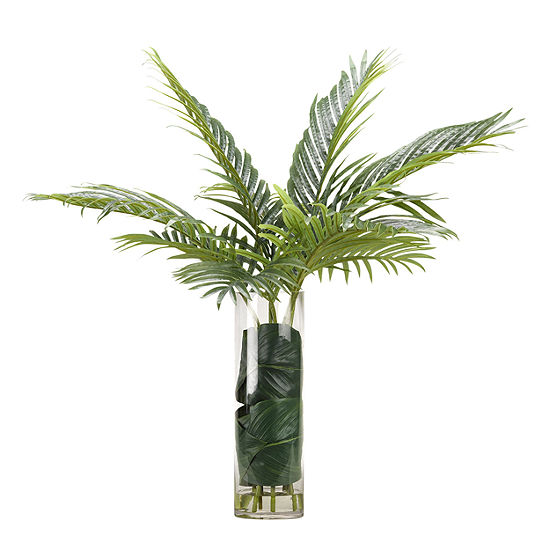 Cycas Palm Fronds in Glass Vase