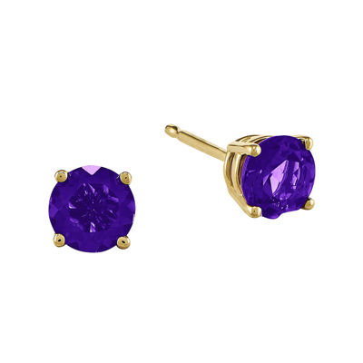 Round Genuine Amethyst 14K Yellow Gold Earrings