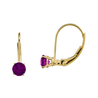 Genuine Rhodolite 14K Yellow Gold Drop Earrings