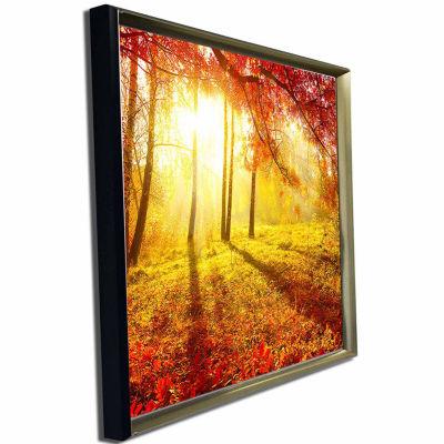 Designart Autumnal Park Landscape Photography Canvas Art Print