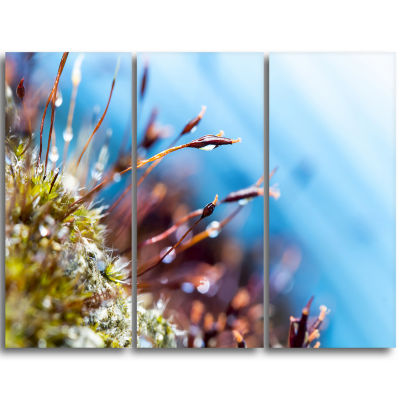 Designart Abstract Moss Flowers In Summer Spring Landscape Triptych Canvas Art Print