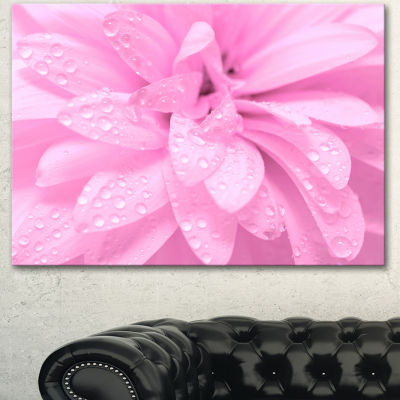 Designart Abstract Pink Flower With Petals FloralCanvas Art Print