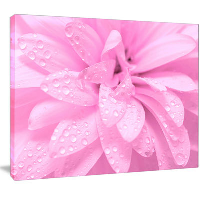 Designart Abstract Pink Flower With Petals FloralCanvas Art Print