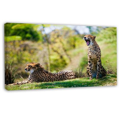 Designart African Cheetahs Relaxing In Grass African Canvas Art Print