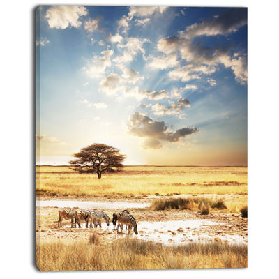 Designart African Zebras Drinking Water Extra Large African Canvas Art Print