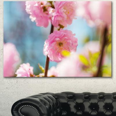 Designart Almond Tree Pink Flowers Large Flower Canvas Wall Art