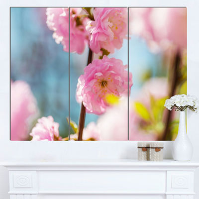 Designart Almond Tree Pink Flowers Large Flower Canvas Wall Art - 3 Panels