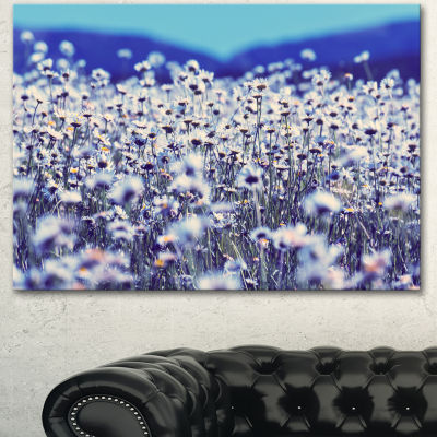 Designart Amazing Light Blue Chamomile Blossom Large Flower Canvas Art Print
