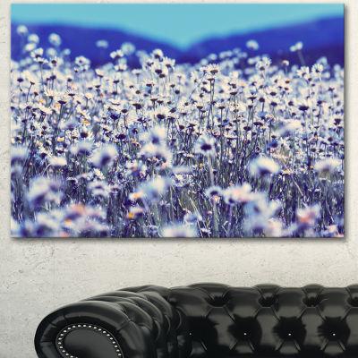 Designart Amazing Light Blue Chamomile Blossom Large Flower Canvas Art Print - 3 Panels